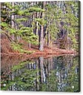 Reflections In The Pines Acrylic Print
