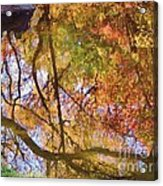 Reflections Of A Colorful Fall 002 Acrylic Print