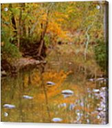 Reflections Of An Autumn Day Acrylic Print