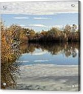 Reflections Of Clouds Acrylic Print by Dana Moyer