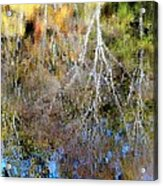 Reflections Of Fall 5 Acrylic Print