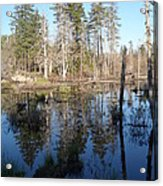 Reflections Of Maine Acrylic Print