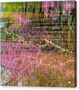 Reflections Of Spring Acrylic Print