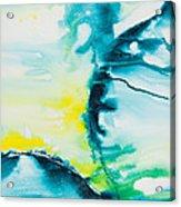Reflections Of The Universe No. 2025 Acrylic Print