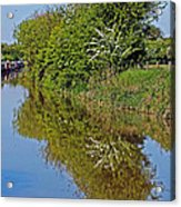 Reflections Of Trees Acrylic Print