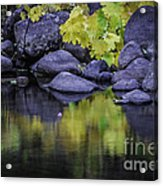 Reflections Of Yellow And Green Acrylic Print