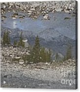Reflections On A Mountain Stream Acrylic Print