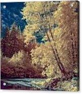 Reflections On Bull Creek Acrylic Print