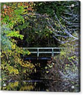 Reflective Fall Acrylic Print