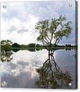 Reflective Flood Waters Acrylic Print