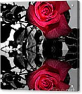 Reflective Red Rose Acrylic Print