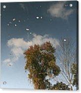 Reflective Thoughts  Acrylic Print