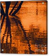 Reflectivity Acrylic Print