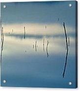 Blue Reflexions Acrylic Print