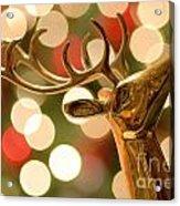 Regal Reindeer Acrylic Print