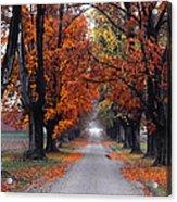 Reid's Orchard Drive Acrylic Print