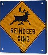 Reindeer Xing Acrylic Print