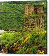 Reinfels Castle Ruins And Wildflowers In The Rhine River Valley 1 Acrylic Print