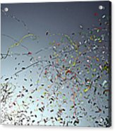Release Of Confetti Under Blue Sky Acrylic Print