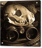 Relics IIi  Acrylic Print