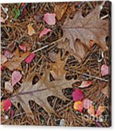 Remainders Acrylic Print