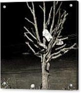 Remembering Joplin Acrylic Print