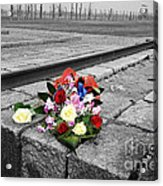 Remembering The Painful Past Acrylic Print