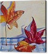 Remnants Of Autumn Acrylic Print