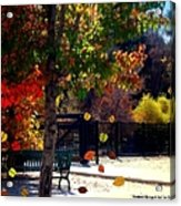 Reno Riverwalk In The Fall Acrylic Print