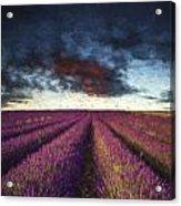 Renoir Style Digital Painting Vibrant Summer Sunset Over Lavender Field Landscape Acrylic Print