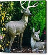 Replica Of Deer Family Acrylic Print by Robert Bray