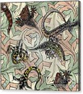 Reptiles - Inspired By Escher - Elena Yakubovich Acrylic Print