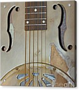 Resonator Detail Acrylic Print