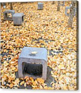 rest in fall IV Acrylic Print