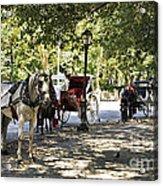 Rest Stop - Central Park Acrylic Print