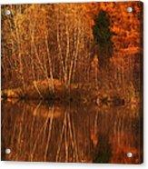 Restes D'automne Acrylic Print