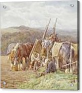 Resting In The Field  Acrylic Print by Charles James Adams