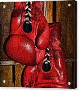 Retired Boxing Gloves Acrylic Print by Paul Ward