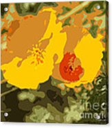 Retro Abstract Poppies 3 Acrylic Print by Artist and Photographer Laura Wrede