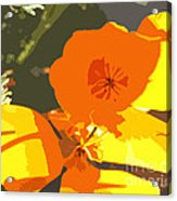 Retro Abstract Poppies Acrylic Print