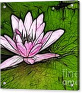 Retro Water Lilly Acrylic Print by Bob Christopher
