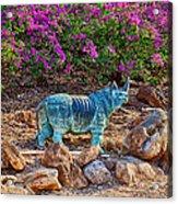 Rhino And Bougainvillea Acrylic Print