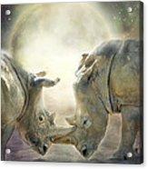 Rhino Love Acrylic Print