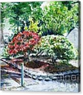 Rhododendrons In The Yard Acrylic Print