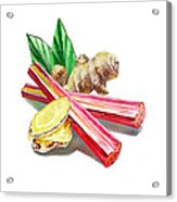 Rhubarb And Ginger Acrylic Print