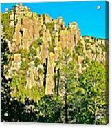 Rhyolite Columns On Ed Riggs Trail In Chiricahua National Monument-arizona Acrylic Print
