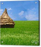 Rice Farming Acrylic Print