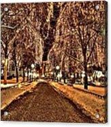 Rice Park Saint Paul Acrylic Print