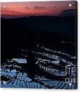 Rice Terrace After Sunset Acrylic Print
