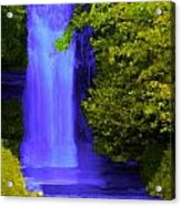 Rich Purple Wateful In The Spring Acrylic Print